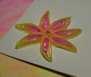 pink yellow flower