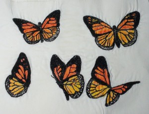 5 butterflies washed