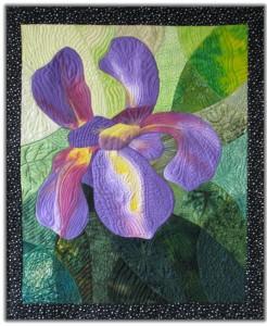 Iris tiny image