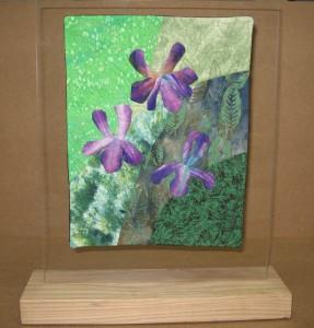 wild iris1