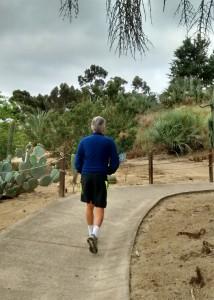 mister cactus garden 4 2016